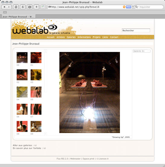 Webalab, artist gallery - preview