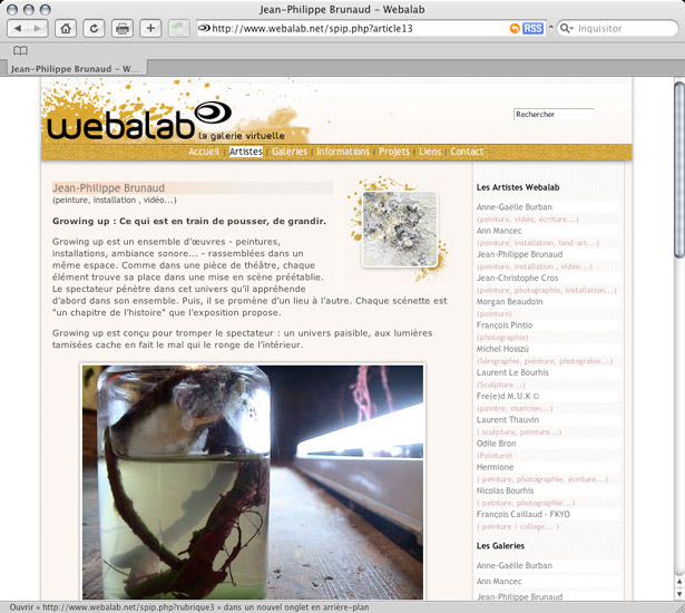 Webalab, artist informations - preview